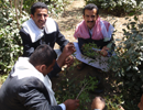 Buying qat in the country