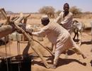 image of  well, Sudan